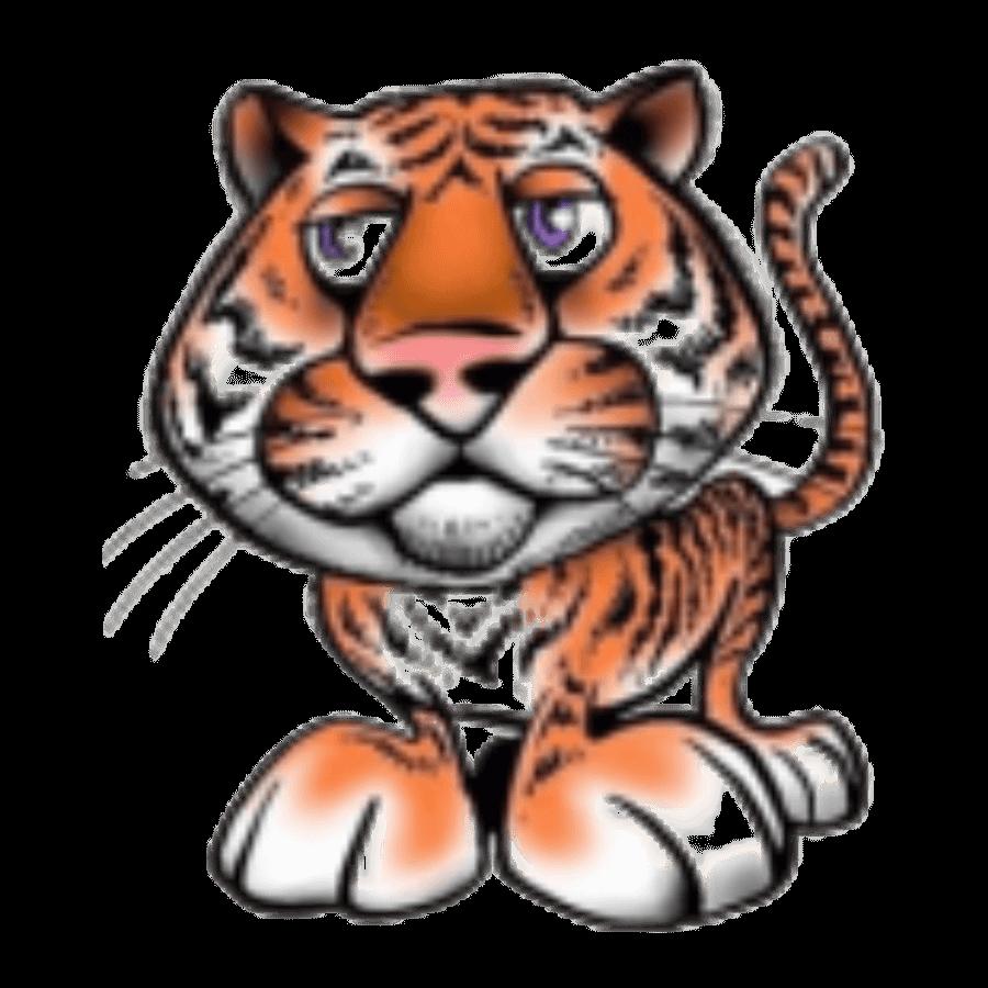Для Тигров год